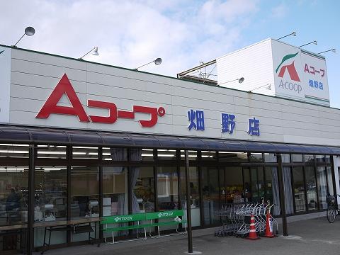 acorp_hatano1.jpg