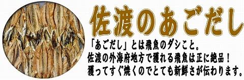 home_tobi.jpg