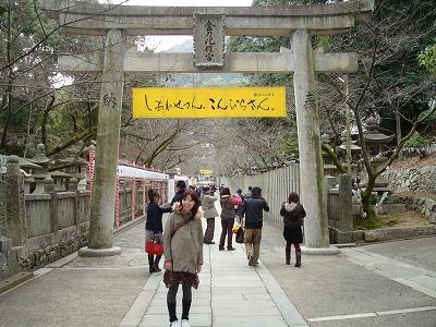 shikoku9.jpg