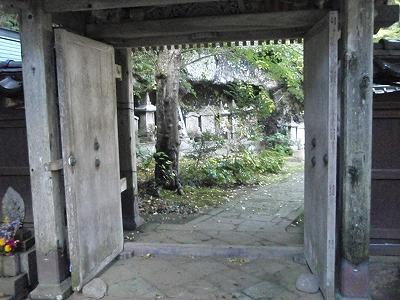shukunegi9.jpg